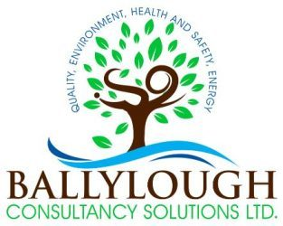 Ballylough Consultancy Solutions